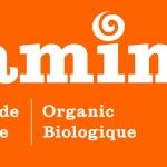 Logo Camino fond orange_orange background