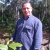 Isidoro de la Rosa, Executive Director of the CONACADO cocoa cooperative